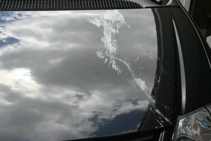 Gum On Car Window