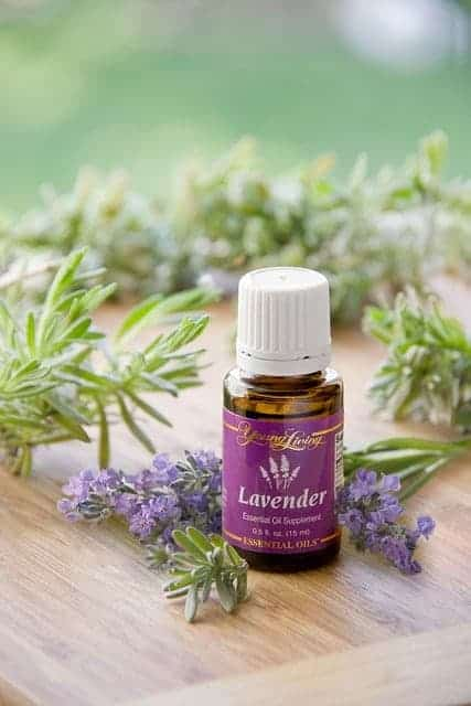What-Is-Young-Living-Lavender-Essential-Oils
