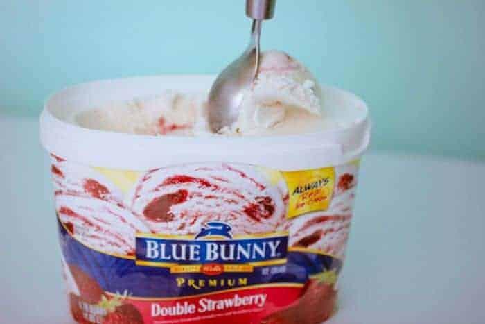 Ice-Cream-Blue-Bunny-Waffles