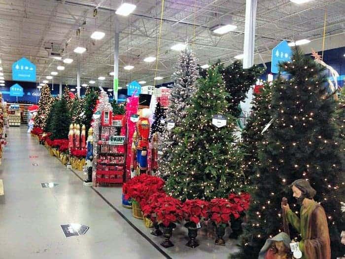 AtHome Store Christmas Tree Selection