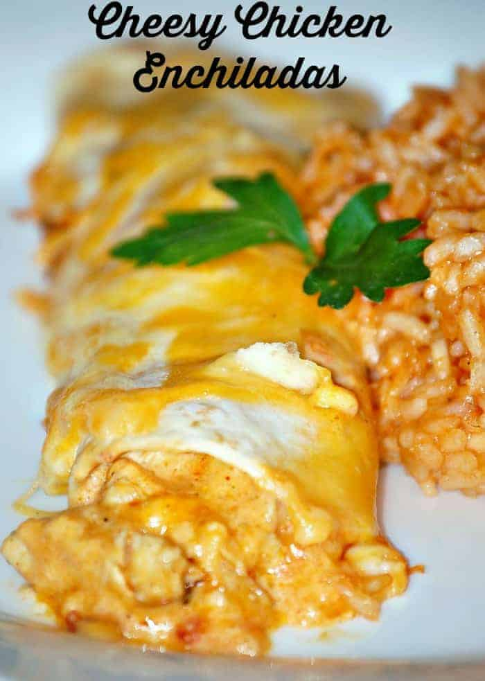 chicken breast enchiladas recipe