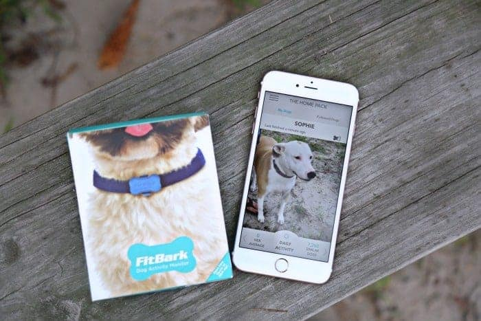 FitBark Dog Activity Monitor Phone App