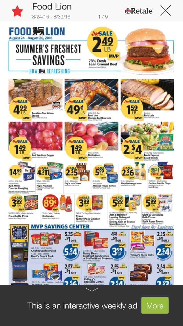 Food Lion Ad Retale App